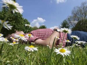 Frühling - Pollenflug