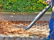 Lärm und Belästigung durch Laubbläser im Herbstdurch