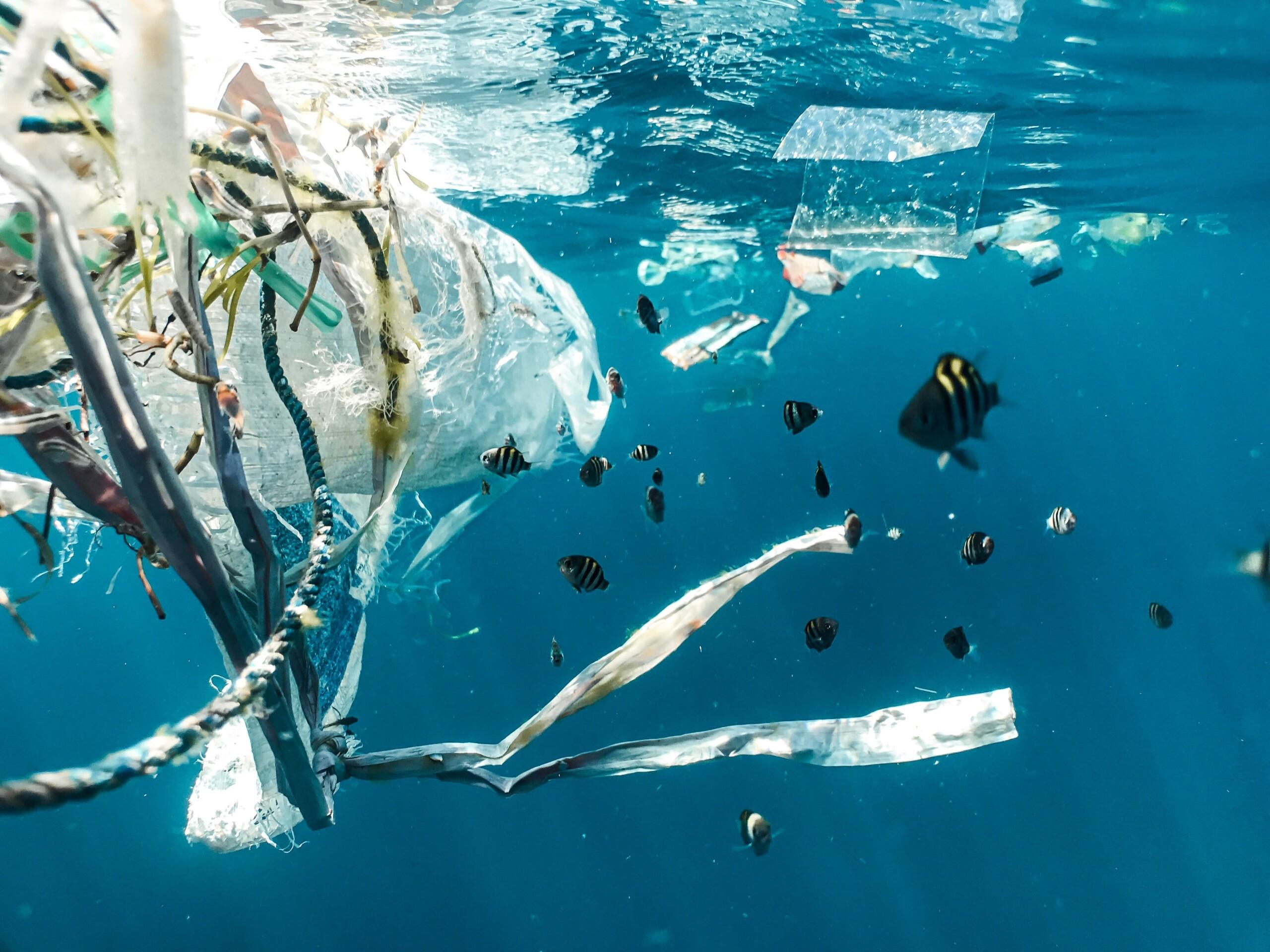 Plastikmüll in den Weltmeeren